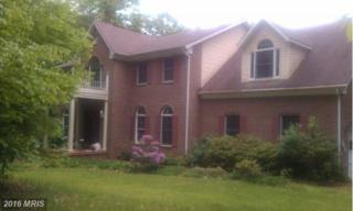 12031 Thomas Avenue, Great Falls, VA 22066 (#FX7603772) :: Pearson Smith Realty