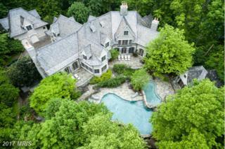 13768 Balmoral Greens Avenue, Clifton, VA 20124 (#FX9678757) :: Pearson Smith Realty