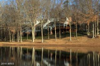 514 Arnon Lake Drive, Great Falls, VA 22066 (#FX9705390) :: Pearson Smith Realty