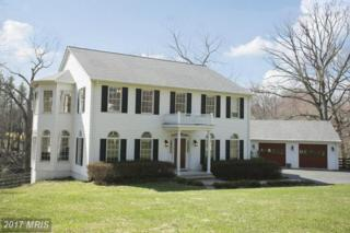 10619 Good Spring Avenue, Great Falls, VA 22066 (#FX9708666) :: Pearson Smith Realty