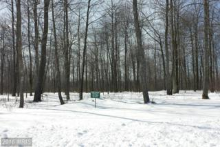 LOT 62 Sundance Way, McHenry, MD 21541 (#GA8281171) :: Pearson Smith Realty