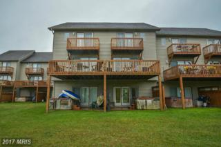 257 Marsh Hill Road #12, McHenry, MD 21541 (#GA9778539) :: Pearson Smith Realty