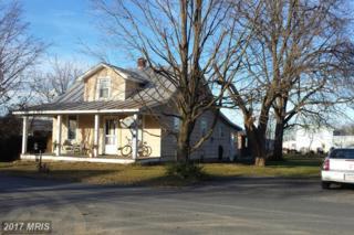 306 Jackson Avenue, Moorefield, WV 26836 (#HD8523543) :: LoCoMusings