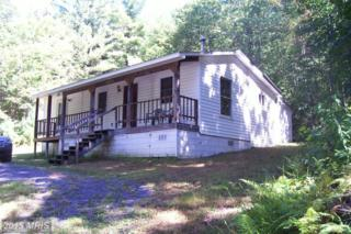 1136 Grizzly Road, Mathias, WV 26812 (#HD8552956) :: Pearson Smith Realty