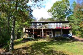 55 Hunter Lane, Mathias, WV 26812 (#HD9759028) :: Pearson Smith Realty