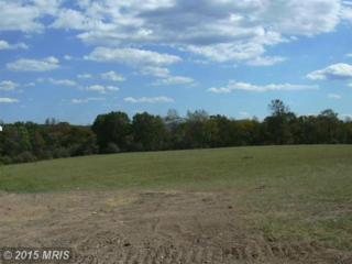 25 Sleepy Meadows, Augusta, WV 26704 (#HS7944034) :: Pearson Smith Realty