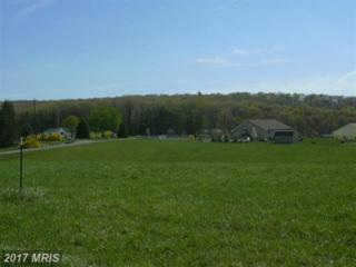 5 Sleepy Meadows, Augusta, WV 26704 (#HS7944082) :: LoCoMusings