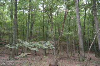 15-LOT # Hoover Young Drive, Capon Bridge, WV 26711 (#HS8173221) :: Pearson Smith Realty