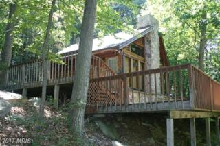 1342 Red Fern Lane, Capon Bridge, WV 26711 (#HS8440718) :: Pearson Smith Realty
