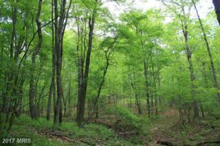 Deer Track Lane, Slanesville, WV 25444 (#HS8556370) :: LoCoMusings