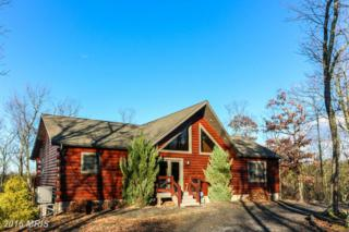 124 Wood Ridge Trail, Romney, WV 26757 (#HS9542895) :: Pearson Smith Realty