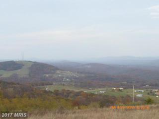Nathaniel Drive, Romney, WV 26757 (#HS9573783) :: Pearson Smith Realty