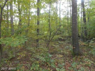 Mack Road, Augusta, WV 26704 (#HS9770237) :: Pearson Smith Realty