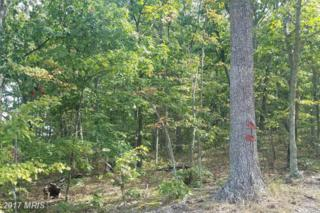 Harwood Dr/Watson School Road, Shanks, WV 26761 (#HS9785744) :: Pearson Smith Realty