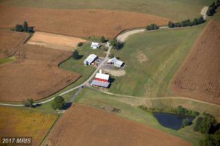 5024 Green Bridge Road, Dayton, MD 21036 (#HW9509927) :: Pearson Smith Realty