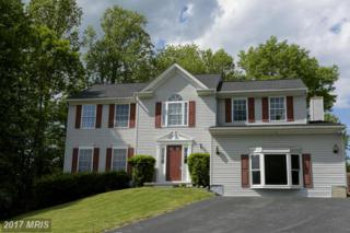 8223 Chandler Court, Ellicott City, MD 21043 (#HW9661205) :: Pearson Smith Realty