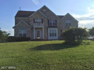 17130 Old Frederick Road, Mount Airy, MD 21771 (#HW9752774) :: Pearson Smith Realty