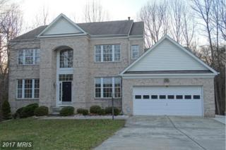 6124 Rippling Tides Terrace, Clarksville, MD 21029 (#HW9808726) :: Pearson Smith Realty