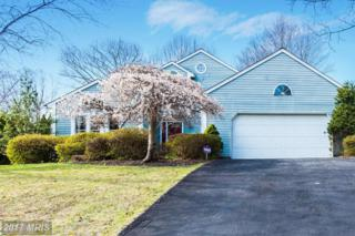 9616 Ashmede Drive, Ellicott City, MD 21042 (#HW9900628) :: Pearson Smith Realty