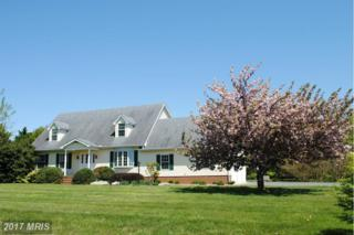 8651 Orchard Drive, Chestertown, MD 21620 (#KE9640262) :: Pearson Smith Realty