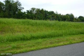 Fitzhugh Lane, King George, VA 22485 (#KG8706540) :: LoCoMusings