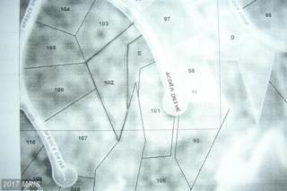 Acorn Drive, Mineral, VA 23117 (#LA8319437) :: Pearson Smith Realty