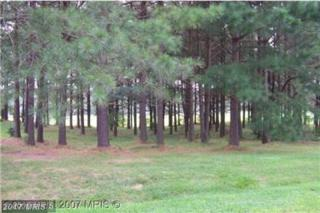 Woodger Circle, Louisa, VA 23093 (#LA8331121) :: LoCoMusings