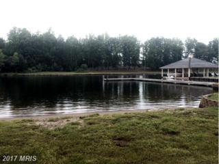 Village Drive, Bumpass, VA 23024 (#LA8681596) :: Pearson Smith Realty
