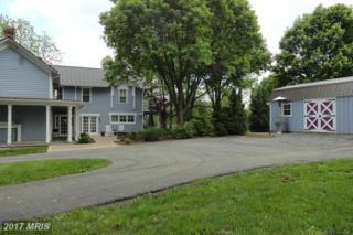 35169 Harry Byrd Highway, Round Hill, VA 20141 (#LO9664687) :: LoCoMusings