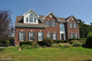 15932 Charter House Lane, Purcellville, VA 20132 (#LO9780724) :: Pearson Smith Realty