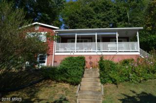 18936 Telegraph Springs Road, Purcellville, VA 20132 (#LO9789816) :: Pearson Smith Realty