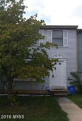 3609 Castle Terrace 115-96, Silver Spring, MD 20904 (#MC8729051) :: Pearson Smith Realty