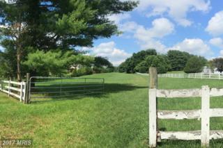 11512 Highland Farm Road, Potomac, MD 20854 (#MC9697480) :: LoCoMusings