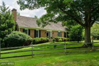 12001 Piney Glen Lane, Potomac, MD 20854 (#MC9732205) :: LoCoMusings