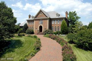 9904 Potomac Manors Drive, Potomac, MD 20854 (#MC9752985) :: LoCoMusings