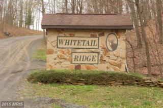 Whitetail Ridge Road, Burlington, WV 26710 (#MI8603760) :: Pearson Smith Realty