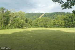 Tangle Wood Loop, New Creek, WV 26743 (#MI8652057) :: Pearson Smith Realty
