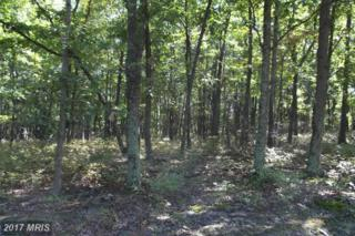Autumn Leaf Drive, New Creek, WV 26743 (#MI8761044) :: Pearson Smith Realty