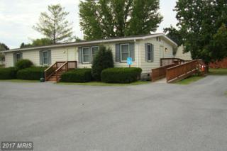 4 Canaan Street, Luray, VA 22835 (#PA8746134) :: Pearson Smith Realty