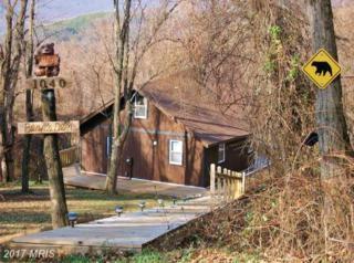 1040 Overlook Mountain Road, Elkton, VA 22827 (#PA9667002) :: LoCoMusings