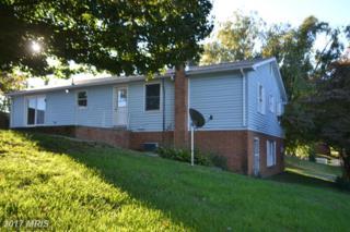 21 Canaan Street, Luray, VA 22835 (#PA9786278) :: Pearson Smith Realty
