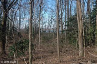 West Ridge Road, Accokeek, MD 20607 (#PG7912541) :: Pearson Smith Realty