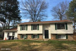 6701 Homestake Drive, Bowie, MD 20720 (#PG9611288) :: Pearson Smith Realty