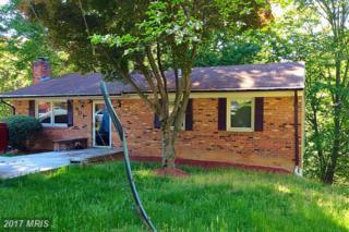 901 Park Terrace, Fort Washington, MD 20744 (#PG9622046) :: Pearson Smith Realty