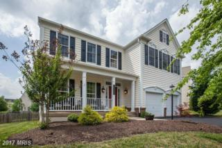 10869 Mayfield Trace Place, Manassas, VA 20112 (#PW9890622) :: Pearson Smith Realty