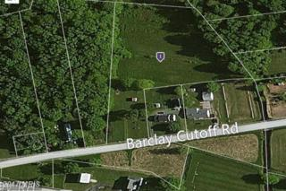 115 Barclay Cutoff Road, Barclay, MD 21607 (#QA9707765) :: Pearson Smith Realty