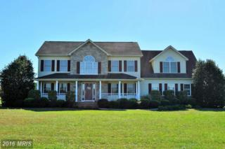1000 White Marsh Road, Centreville, MD 21617 (#QA9781651) :: Pearson Smith Realty