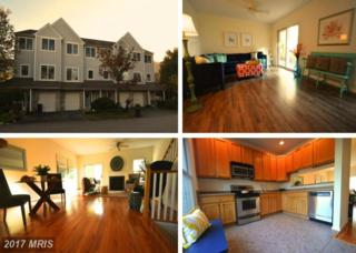 514 Auckland Way, Chester, MD 21619 (#QA9790738) :: Pearson Smith Realty