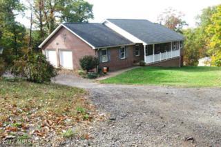 470 Mountain Laurel Drive, Mount Jackson, VA 22842 (#SH9503482) :: Pearson Smith Realty