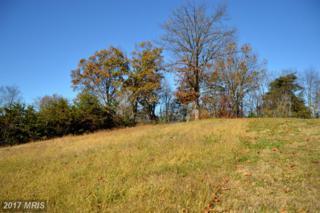 420 Roland Drive, Woodstock, VA 22664 (#SH9665352) :: Pearson Smith Realty